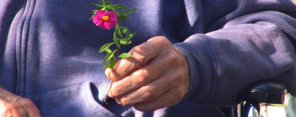 Es necesario prevenir el maltrato y favores la adopción de buenas prácticas generar un ambiente por un bienestar en los adultos mayores.