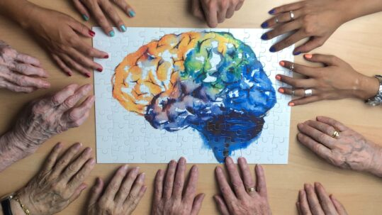 foto cerebro contraportada